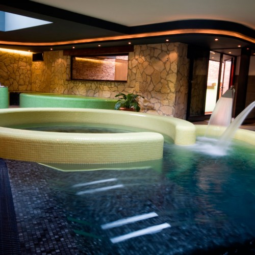 Mosaic Plunge Pool Spa